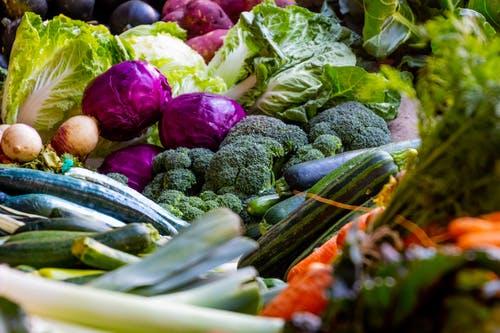 Tout sur les techniques de conditionnement des aliments